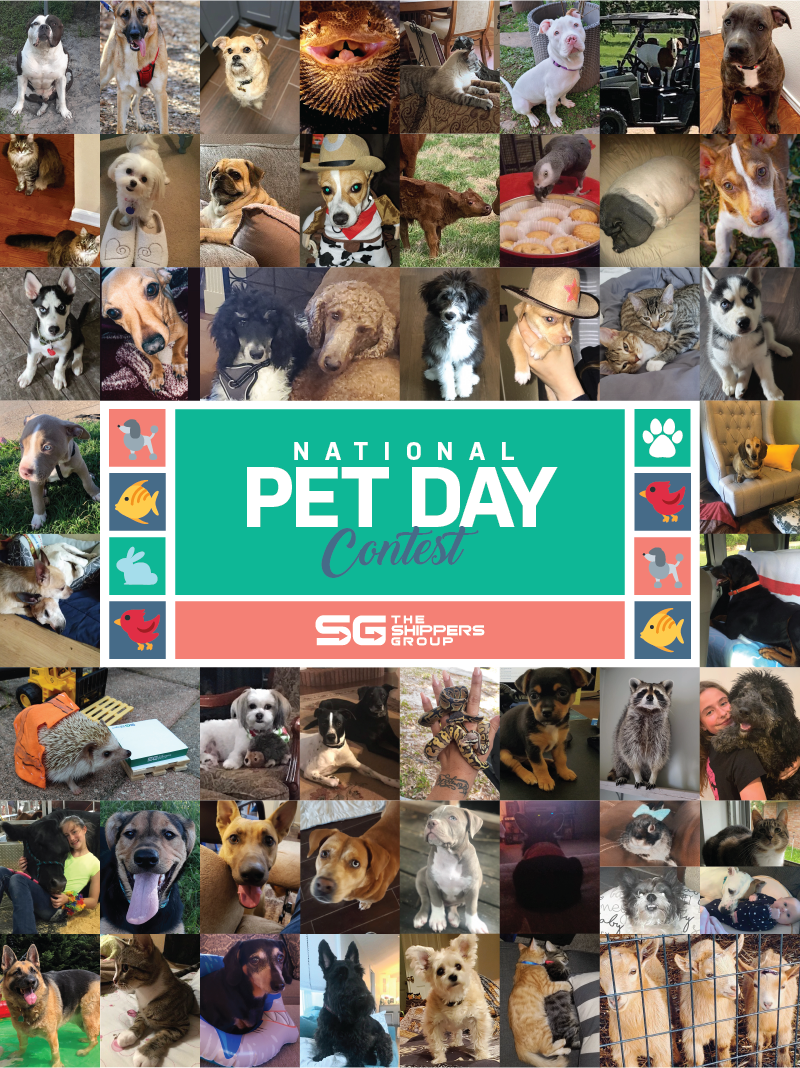 The Shippers Group Celebrates National Pet Day with 2nd Annual Contest